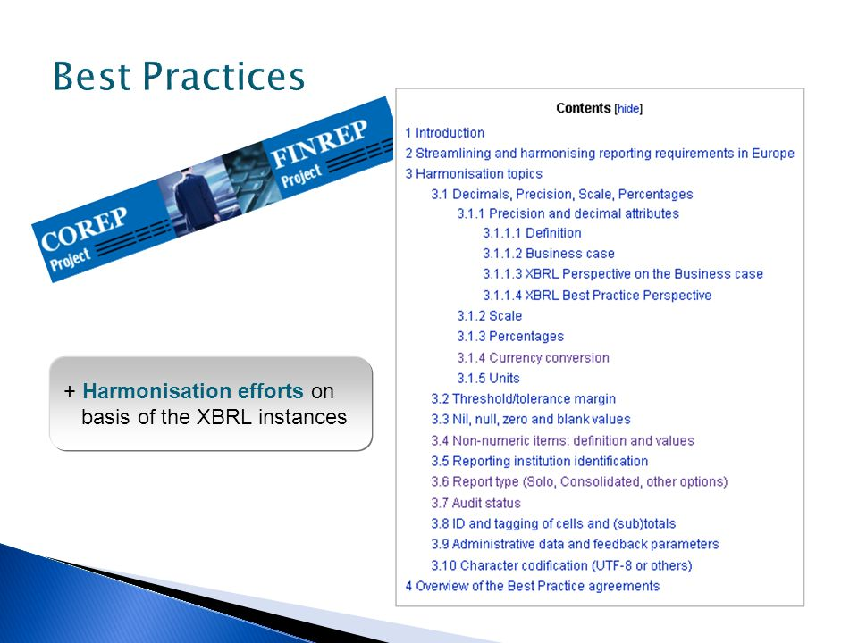 Best Practices + Harmonisation efforts on basis of the XBRL instances