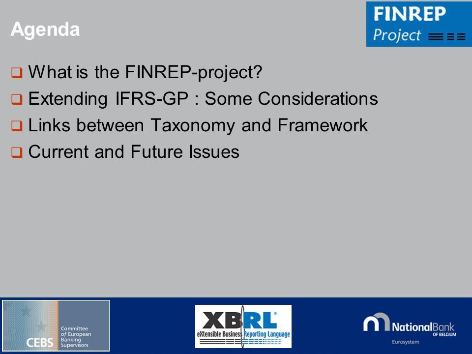 Agenda What is the FINREP-project