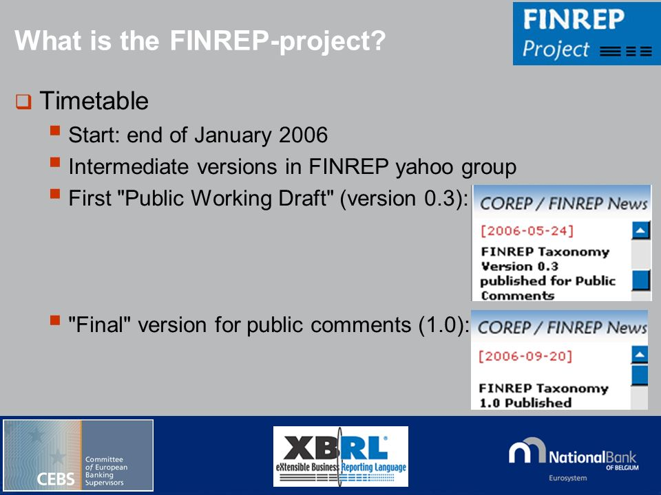 What is the FINREP-project