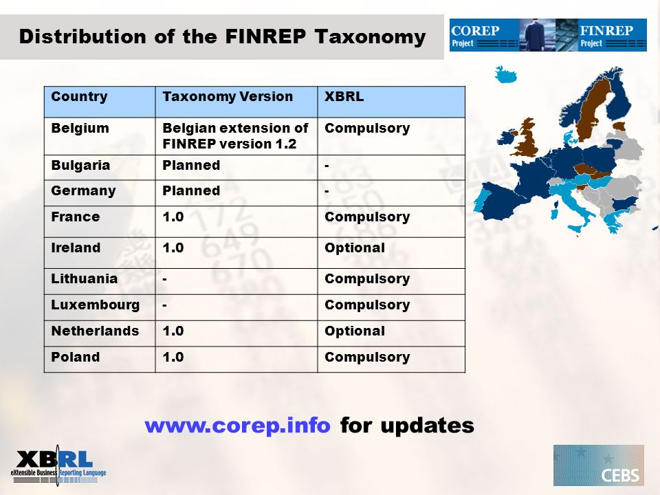 Distribution of the FINREP Taxonomy