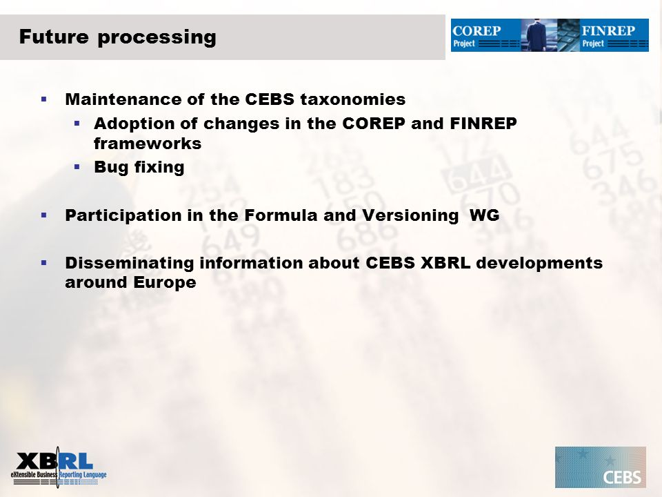 Future processing Maintenance of the CEBS taxonomies