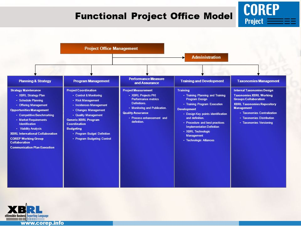 Functional Project Office Model