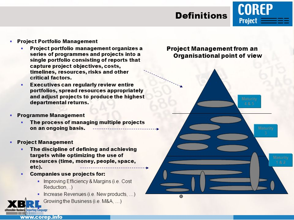 Project Management from an Organisational point of view