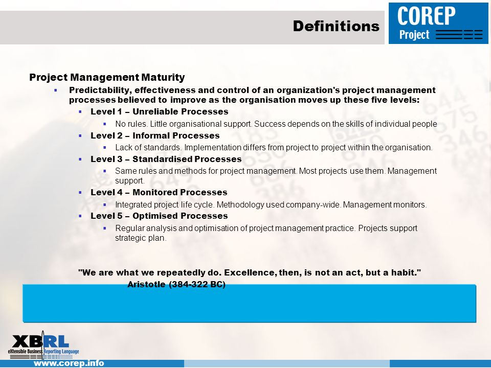Definitions Project Management Maturity