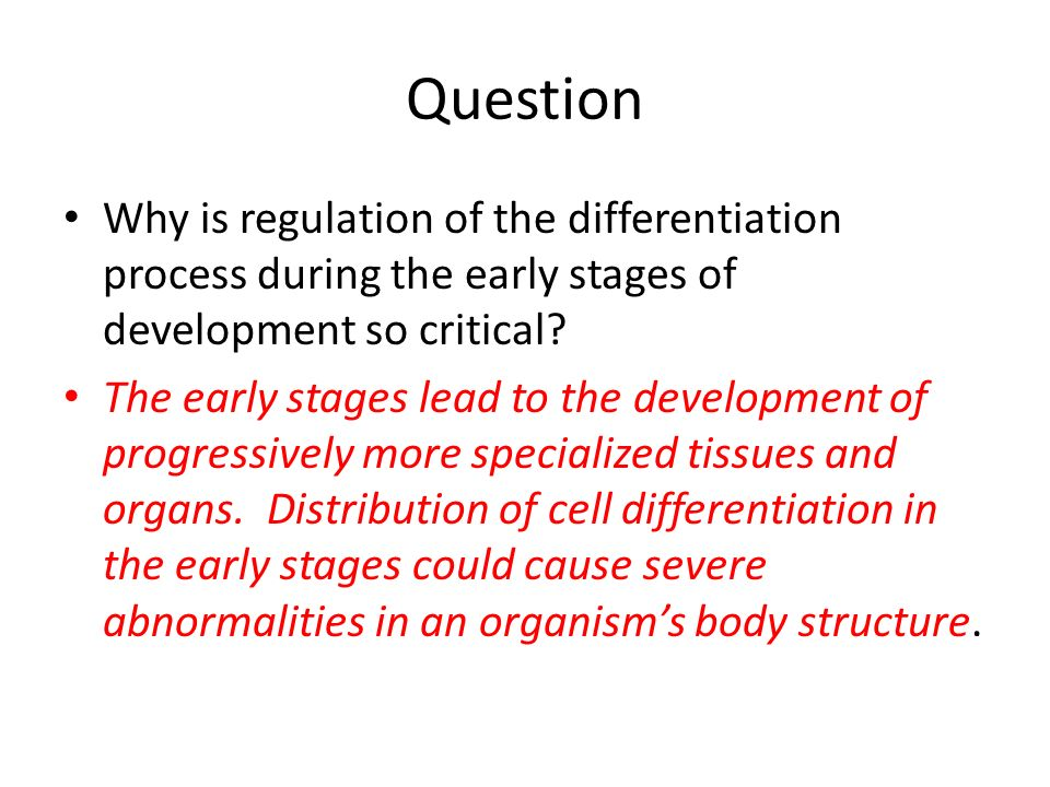 Question Why is regulation of the differentiation process during the early stages of development so critical