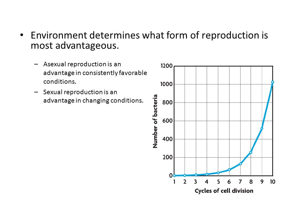 Environment determines what form of reproduction is most advantageous.