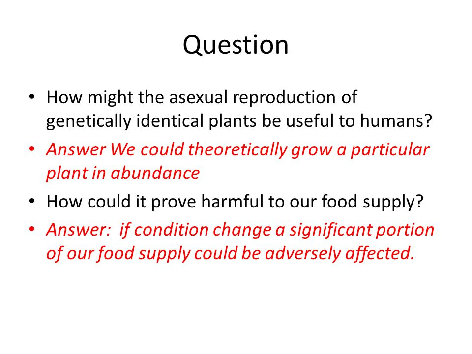 Question How might the asexual reproduction of genetically identical plants be useful to humans