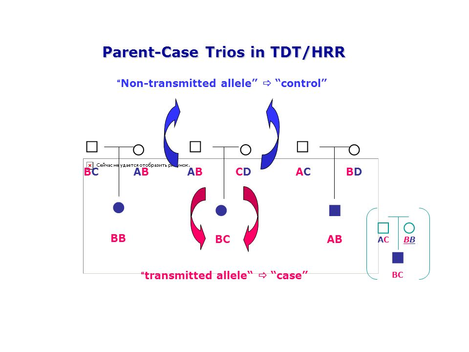 □ ○ ■ ● Parent-Case Trios in TDT/HRR AB CD BD