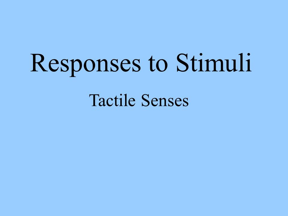 Responses to Stimuli Tactile Senses
