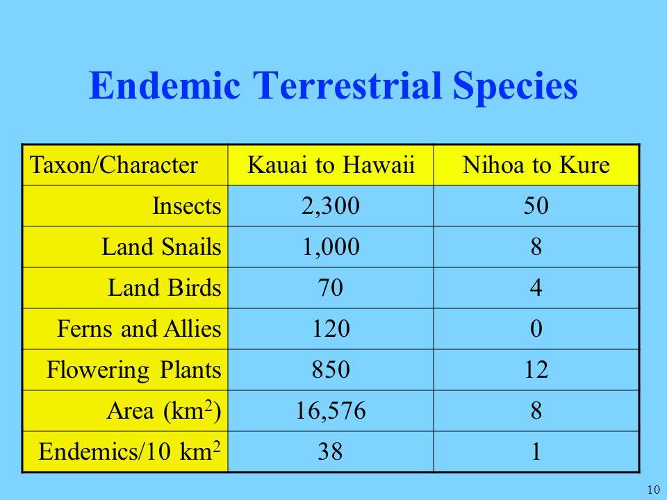 Endemic Terrestrial Species
