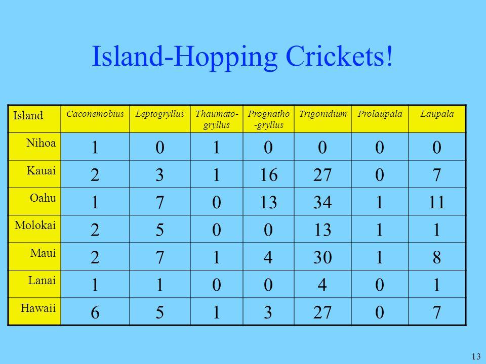 Island-Hopping Crickets!