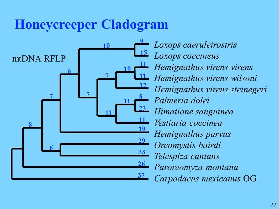 Honeycreeper Cladogram