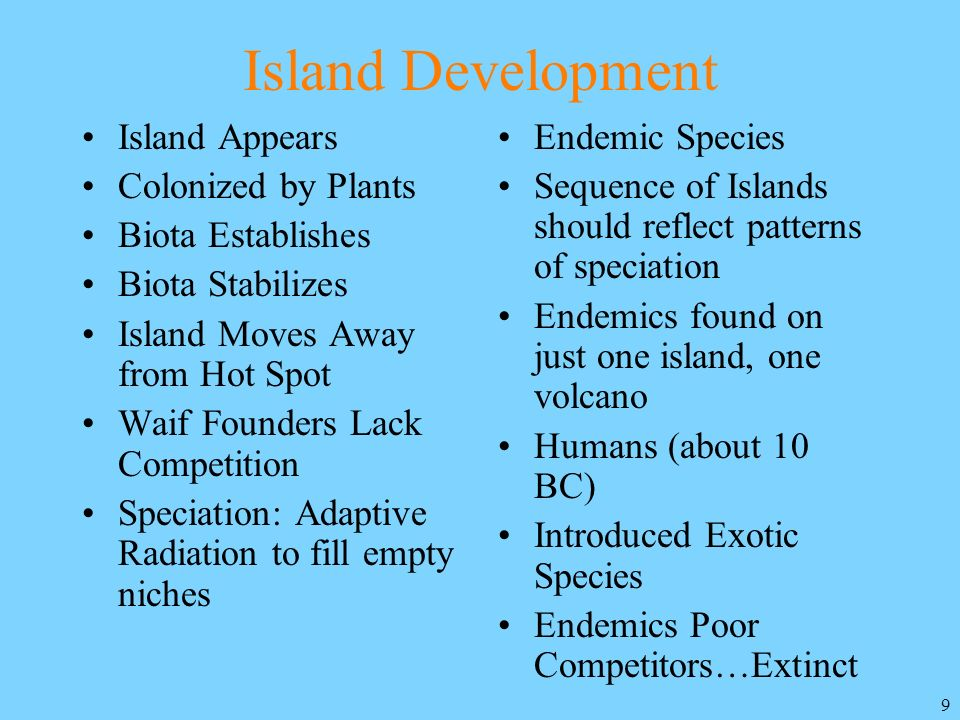 Island Development Island Appears Colonized by Plants