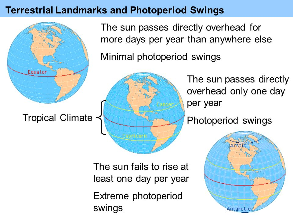 Terrestrial Landmarks and Photoperiod Swings