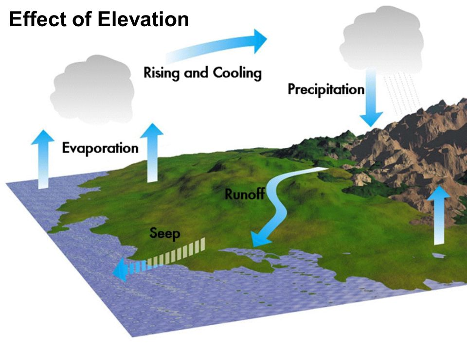 Effect of Elevation