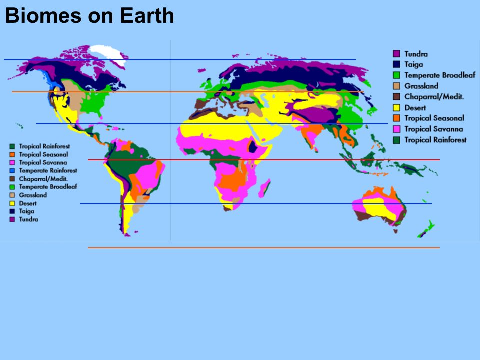 Biomes on Earth