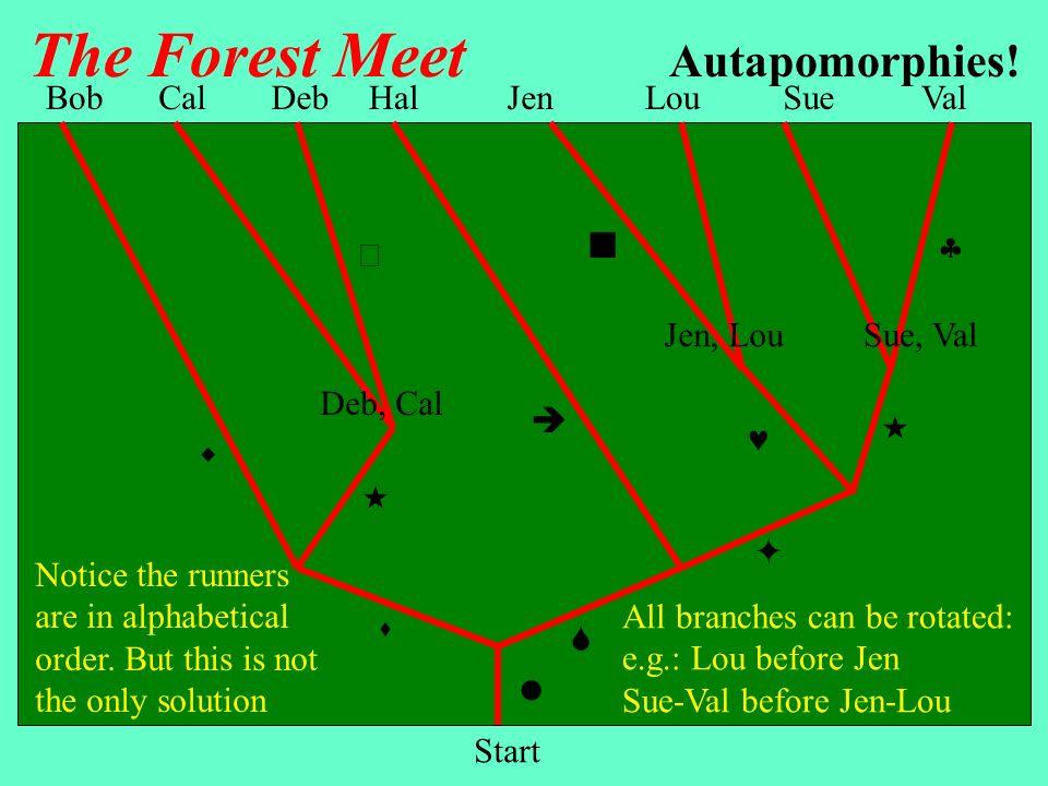 The Forest Meet Autapomorphies! Bob Cal Deb Hal Jen Lou Sue Val   