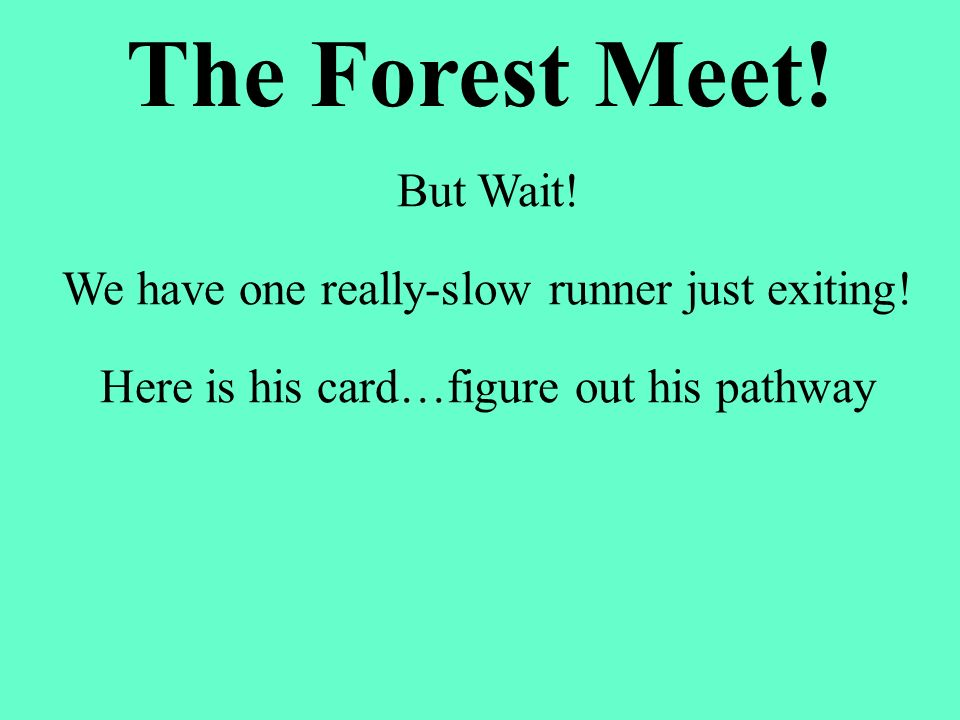 The Forest Meet! But Wait!