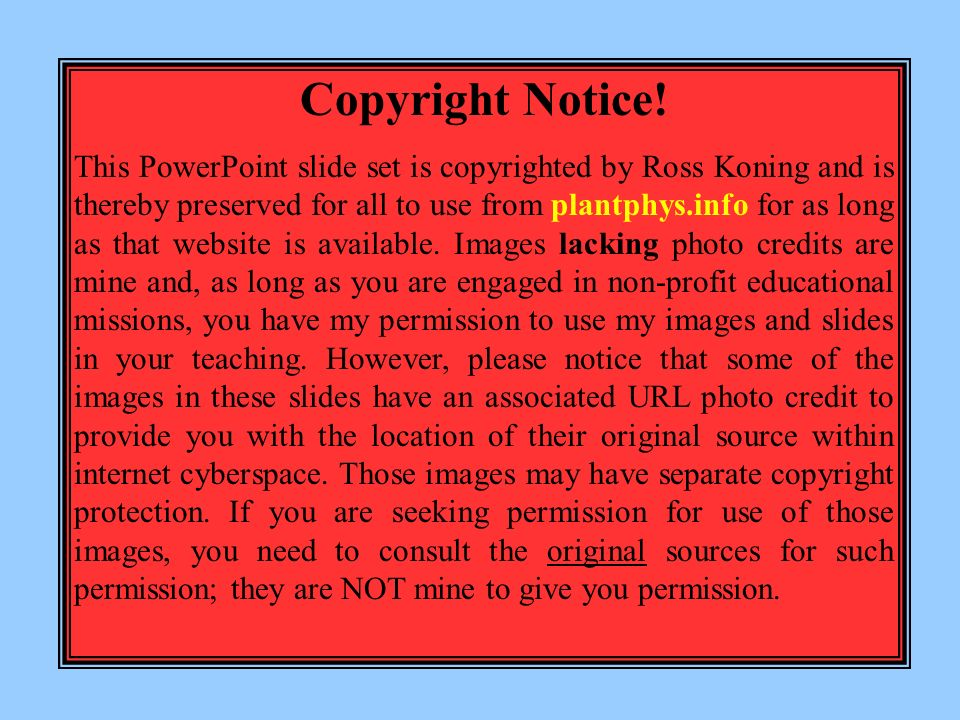 how to use copyright notice
