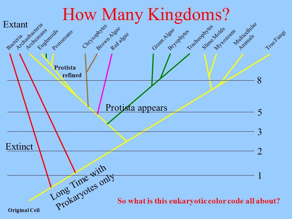 How Many Kingdoms Extant 8 Protista appears 5 3 Extinct 2