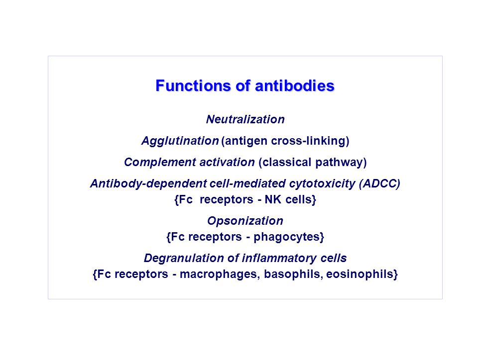 Functions of antibodies