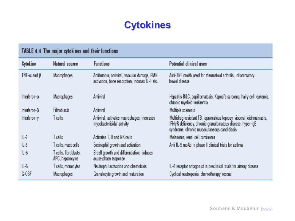Cytokines Souhami & Mouxham (www)