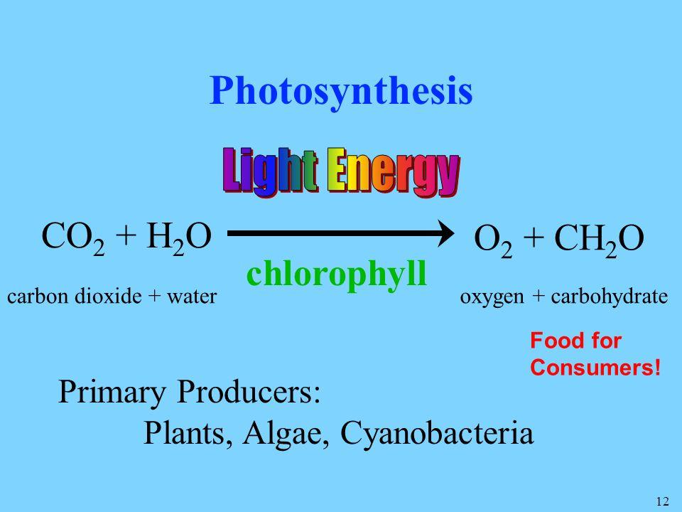 Photosynthesis CO2 + H2O O2 + CH2O chlorophyll Light Energy