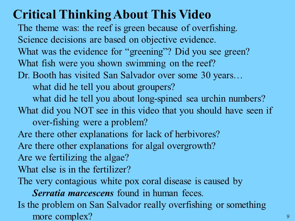 Critical Thinking About This Video