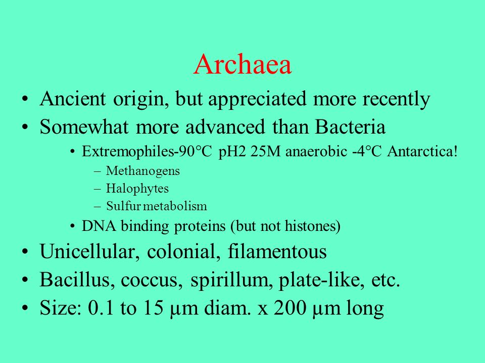 Archaea Ancient origin, but appreciated more recently