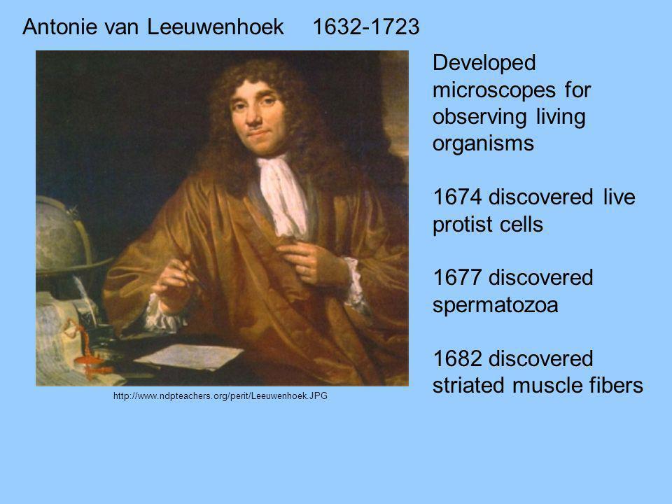 Antonie van Leeuwenhoek 1632-1723