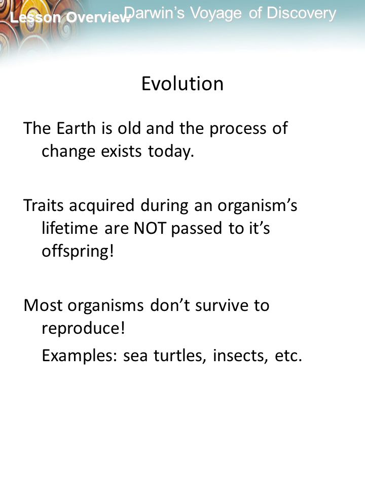 Evolution The Earth is old and the process of change exists today.