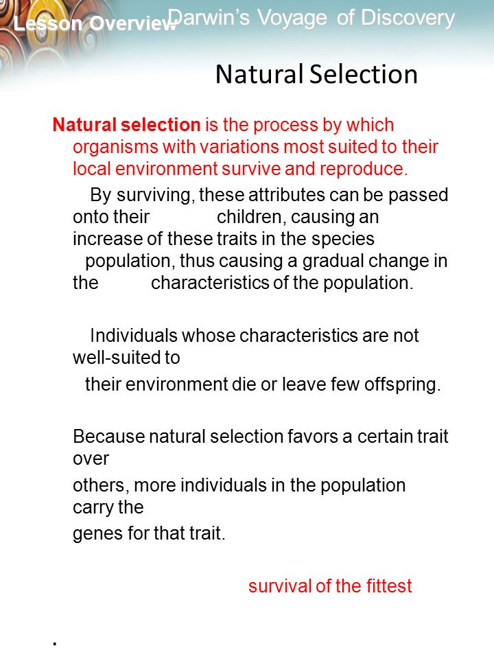 Natural Selection Natural selection is the process by which organisms with variations most suited to their local environment survive and reproduce.