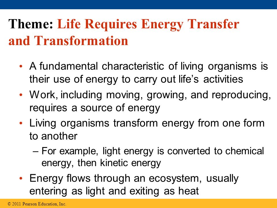 Theme: Life Requires Energy Transfer and Transformation