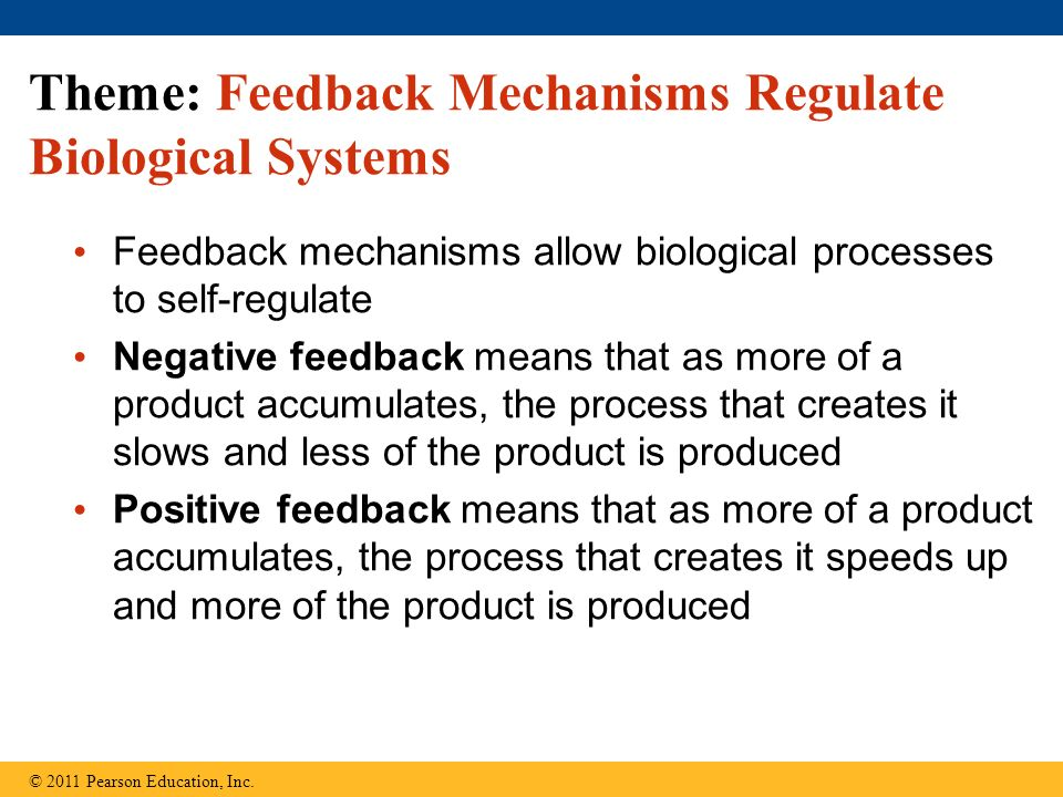 Theme: Feedback Mechanisms Regulate Biological Systems