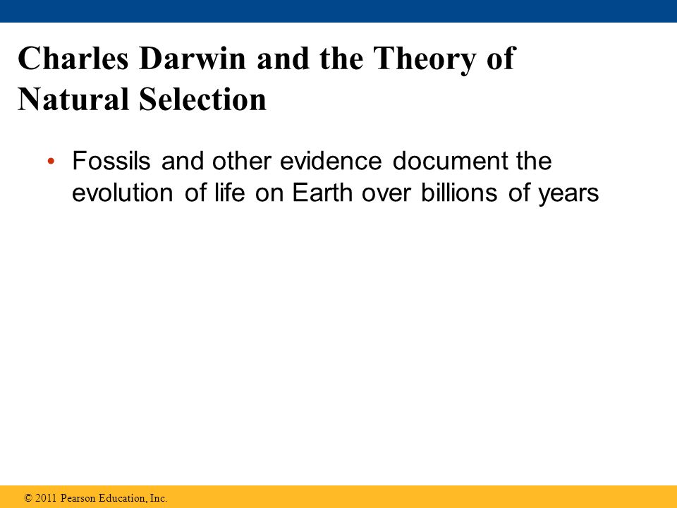 theory of natural selection by darwin Practice quiz for darwin and natural selection:  charles darwin came to understand  darwin and wallace's theory of evolution by natural selection failed to.