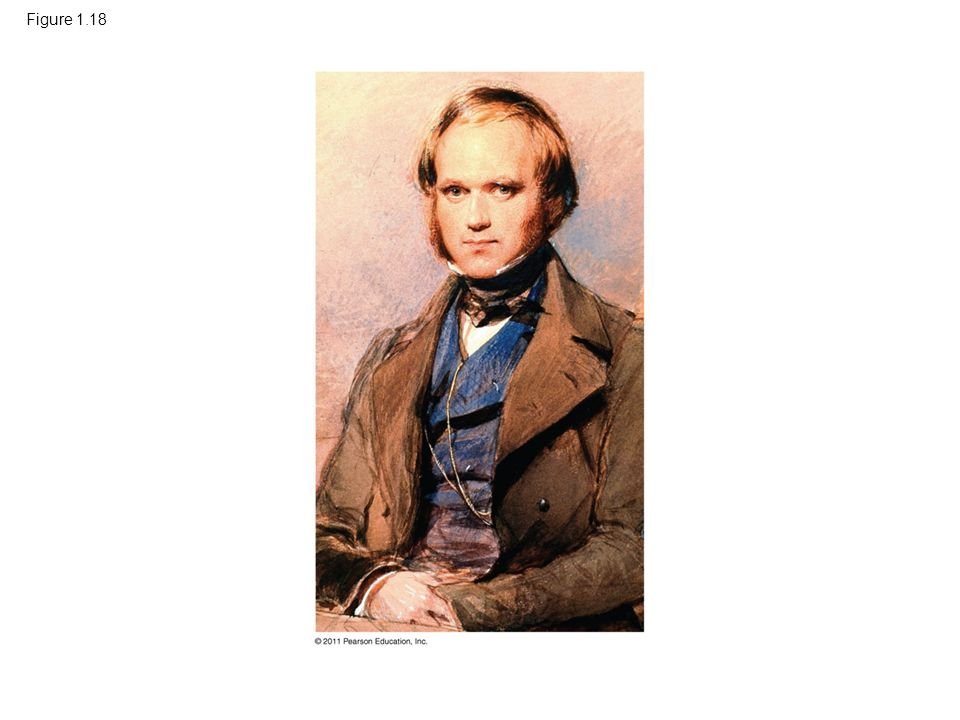 Figure 1.18 Figure 1.18 Charles Darwin as a young man.