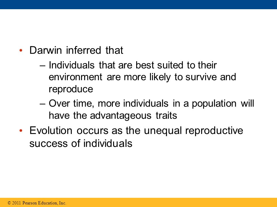 Evolution occurs as the unequal reproductive success of individuals