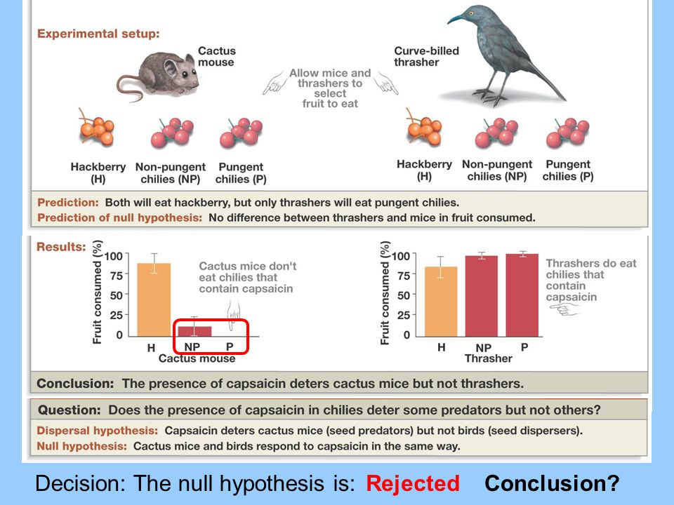 Decision: The null hypothesis is:
