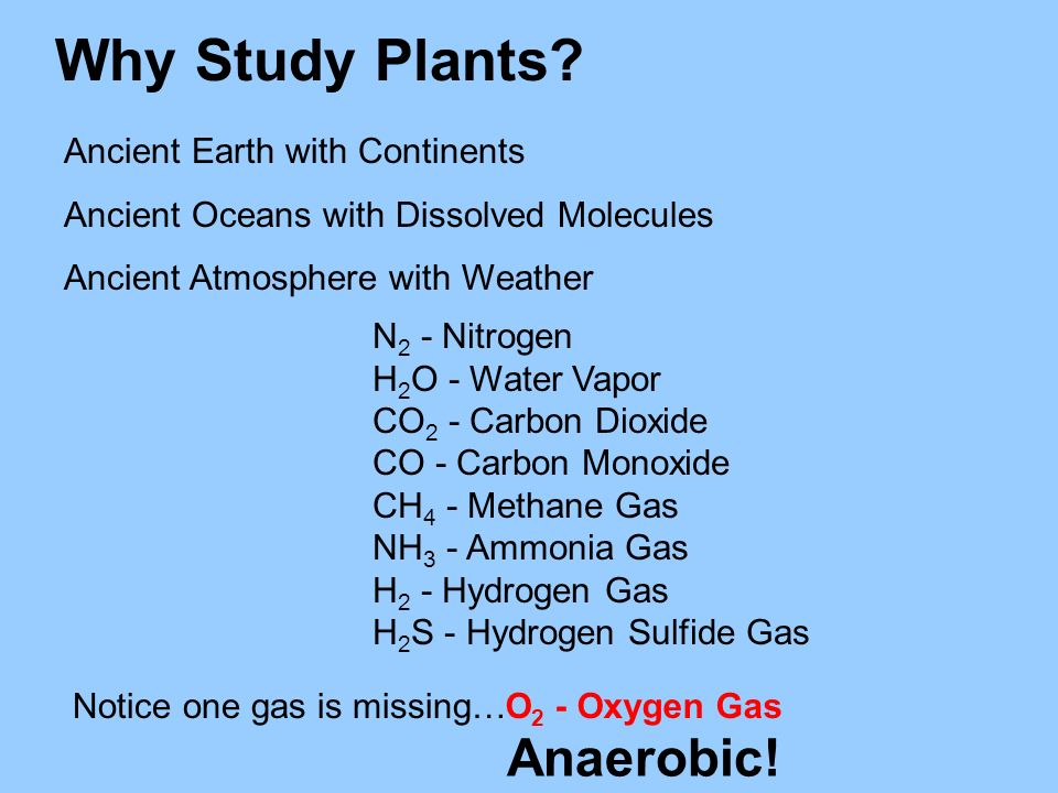 Why Study Plants Anaerobic! Ancient Earth with Continents