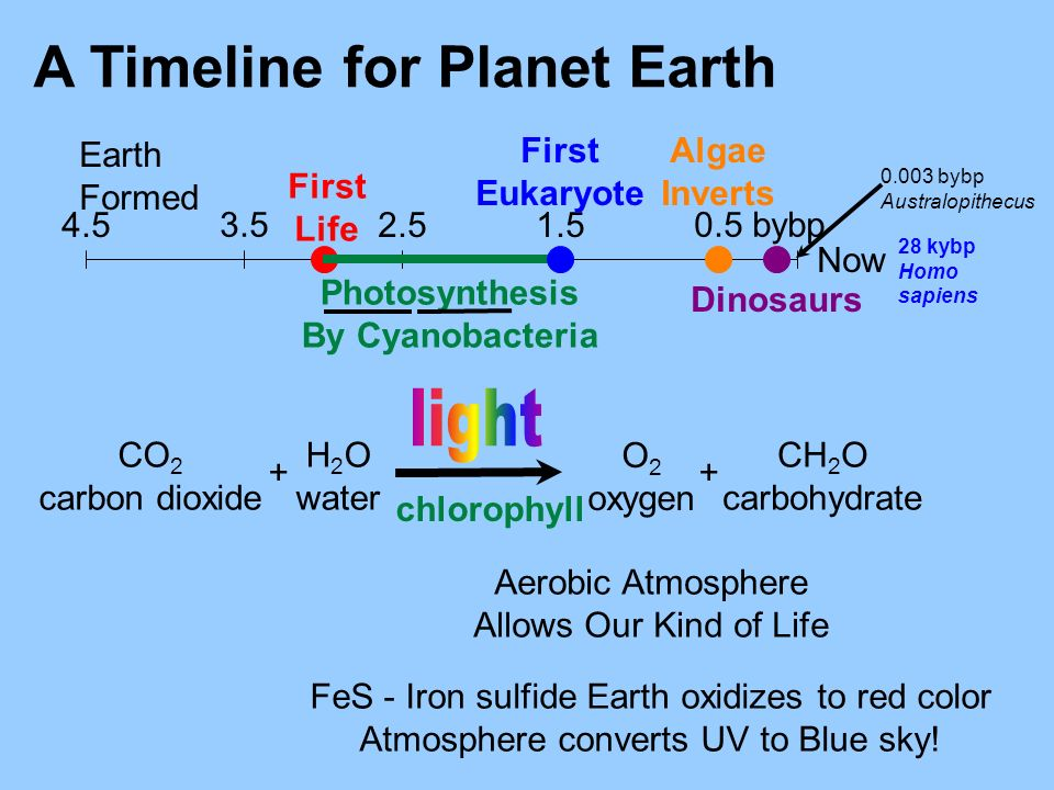 A Timeline for Planet Earth