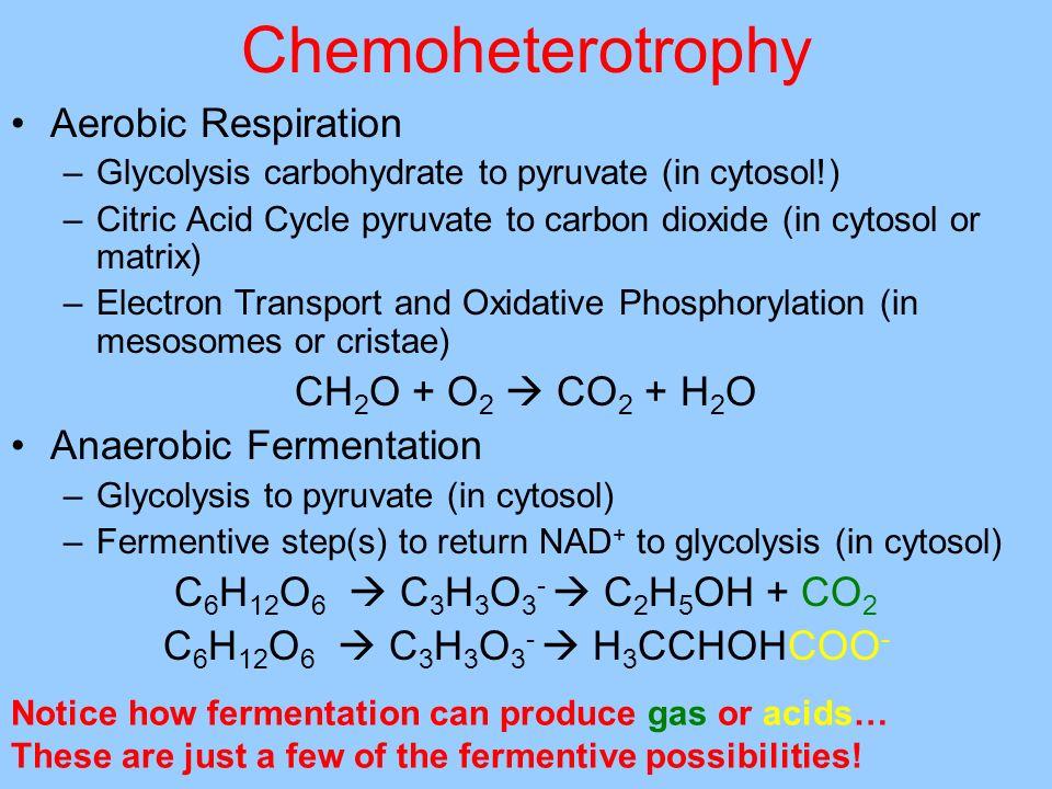 Chemoheterotrophy Aerobic Respiration CH2O + O2  CO2 + H2O