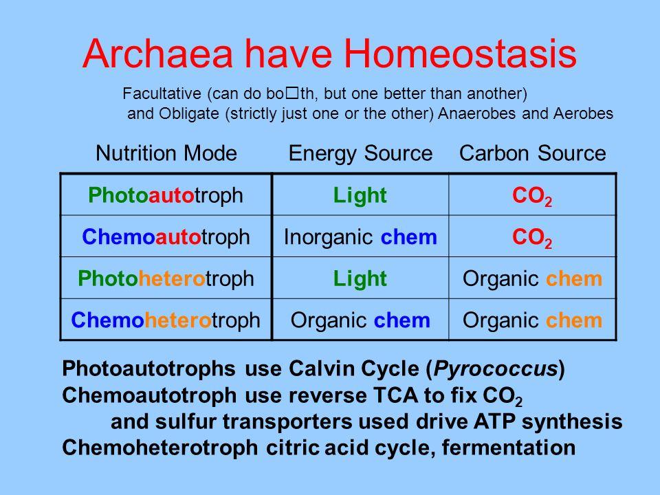 Archaea have Homeostasis