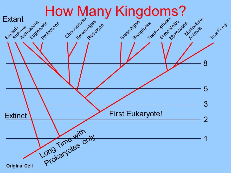 How Many Kingdoms Extant 8 5 3 First Eukaryote! Extinct 2 1