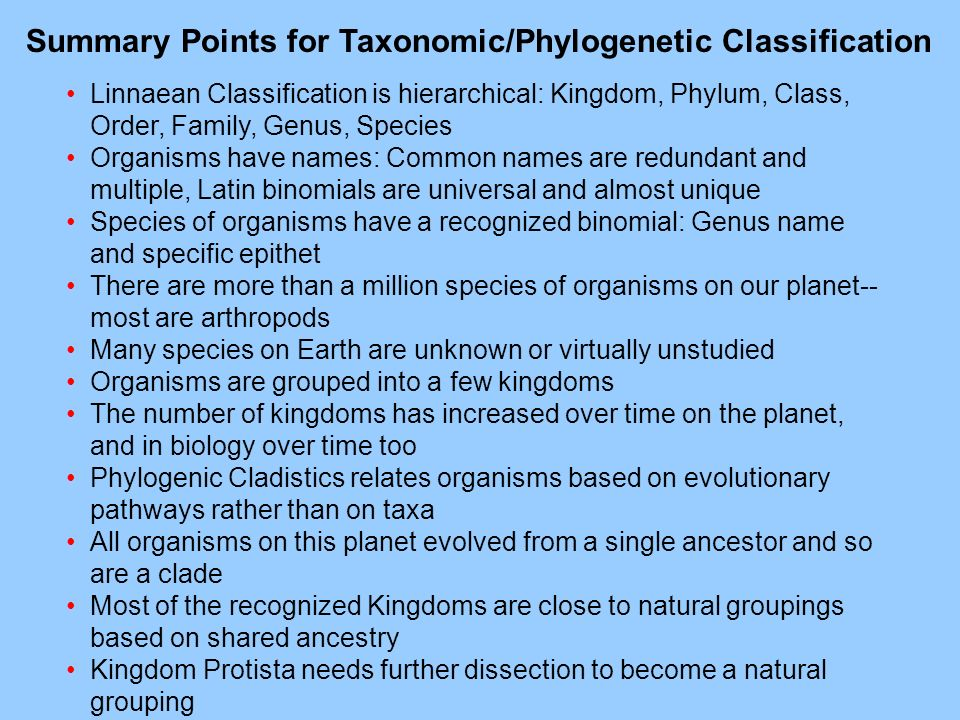 Summary Points for Taxonomic/Phylogenetic Classification