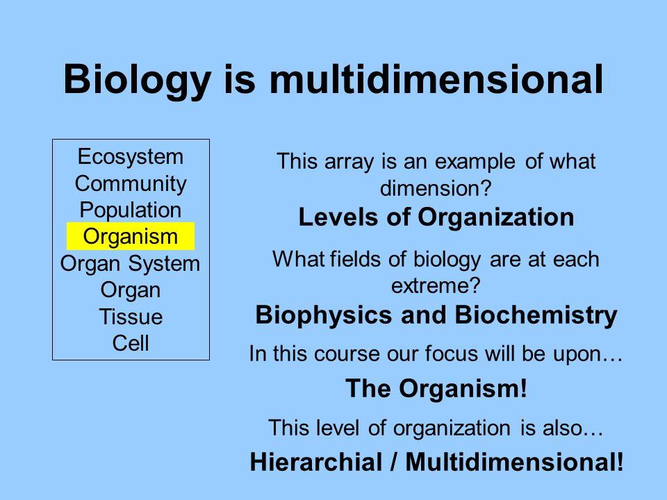 Biology is multidimensional