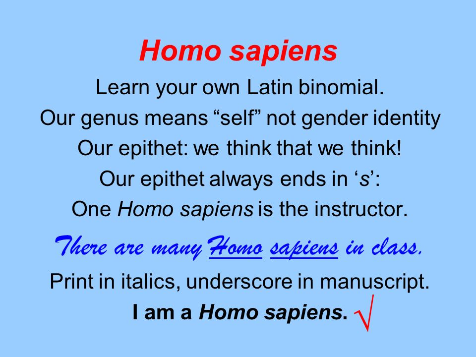 √ Homo sapiens There are many Homo sapiens in class.