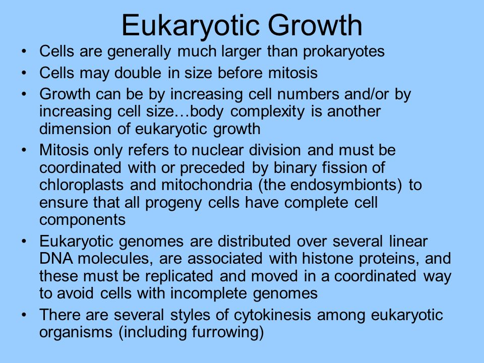 Eukaryotic Growth Cells are generally much larger than prokaryotes