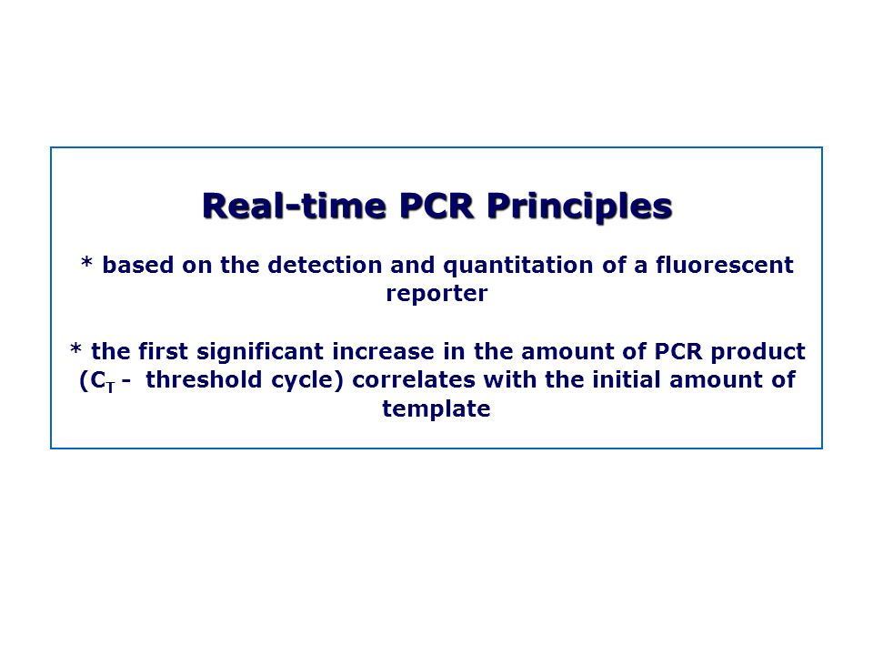 Real time pcr m tevfik dorak md phd ppt download for Pcr template amount