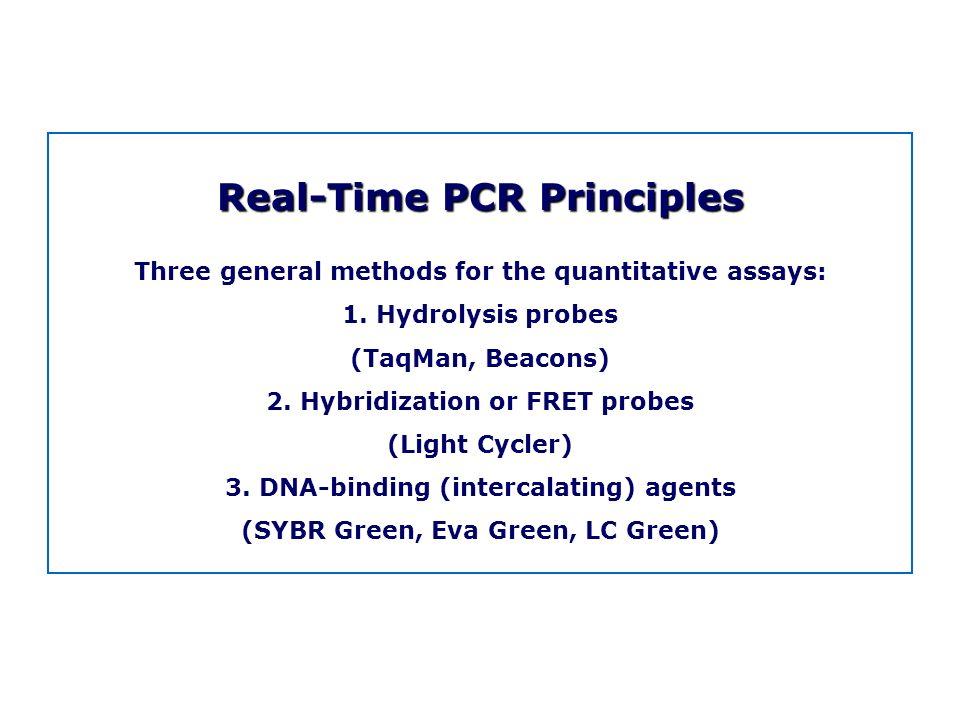 Real-Time PCR Principles
