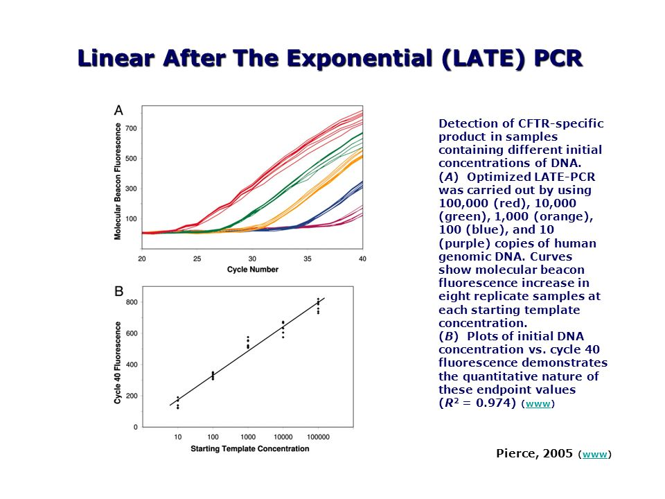 Linear After The Exponential (LATE) PCR